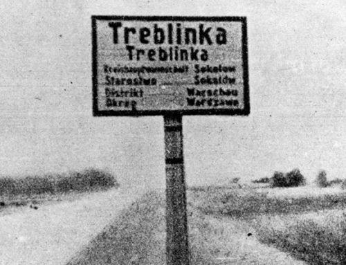 """31.05-1.06.2021 r. – Międzynarodowa Konferencja Naukowa """"Treblinka – ostrzega i przypomina!"""